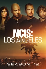 Ncis Los Angeles: Season 12